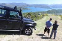 Picton Shore Excursion: Gondola Hill 4WD Tour
