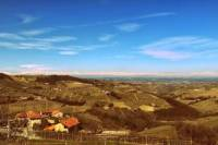 Piedmont Wine Tasting and Cellar Tour