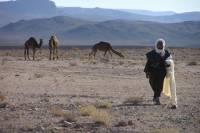 Private 2-Night Tour to Erg Chegaga Sand Desert from Marrakech