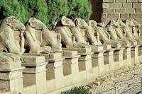 Private 7-Night Tour of Cairo, Giza and Luxor including Nile Cruise and Domestic Flights from Cairo