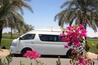 Private Car and Driver for 1 Day in Luxor