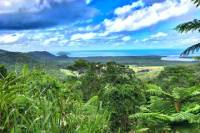 Private Day Tour from Cairns Including Daintree Rainforest National Park, Cape Tribulation and Mossman Gorge