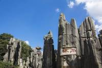 Private Day Tour of Stone Forest from Kunming