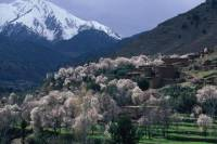 Private Day Trip: Atlas Mountains, Ourika Valley, Berber Village, Waterfall, Takerkoust Lake from Marrakech