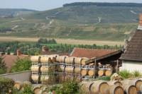 Private Day Trip to Champagne from Paris