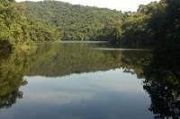 Private Eco Tour at Cantareira State Park from São Paulo