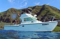 Private Eco-Tour: Snorkeling and Wildlife-Viewing Yacht Cruise from Waianae