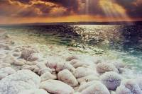 Private Full Day Dead Sea Sanctuary with Lunch and Optional Spa Massage or Treatments