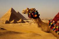 Private Guided Tour to Giza Pyramids and Cooking Class with Local Family in Cairo