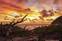 Private Photography Tour on Oahu