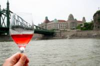 Private Tour: Budapest Danube River Wine Tasting Cruise