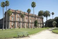 Private Tour: Capodimonte Museum in Naples
