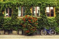 Private Tour: Copenhagen City Bike Tour
