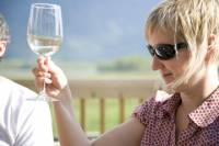 Private Tour: Fraser Valley Wine Tour in Vancouver