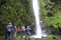 Private Tour: Horseback Riding, Waterfall and Rainforest Hike Adventure in Arenal