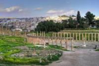 Private Tour: Jerash Half Day Tour from Dead Sea