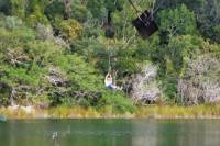 Private Tour: Jungle Adventure at Punta Laguna Nature Reserve