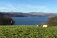 Private Tour: Lake District of Beatrix Potter