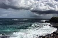 Private Tour: Maui Country Farms