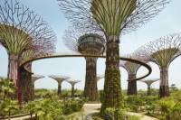 Private Tour: Singapore Round-Island Tour with Changi Prison, Kranji War Memorial and Gardens by the Bay