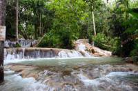 Private Tour to Dunn's River Falls