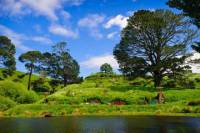 Private Tour: Waitomo Caves and The Lord of the Rings Hobbiton Movie Set Tour from Auckland