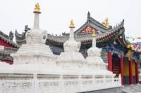 Private Tour: Xi'an Bike Adventure Including Tibetan Temple and Terracotta Warriors