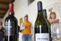 Private Tour: Yarra Valley Wineries and Wine Tasting Tour