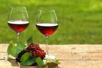 Private Wine Tasting Tour from Makarska Riviera to Peljesac Peninsula