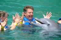 Puerto Aventuras Dolphin Royal Swim