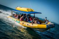 Rafting Tour to Whitehaven Beach
