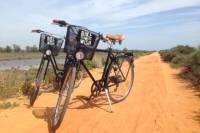 Ria Formosa National Park Bike Tour