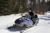 Rocky Mountains Snowmobile Tour: Backcountry Adventure