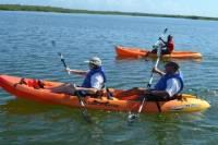 Rois Lagoon Kayak Tour in Falmouth