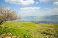 Sacred Jewish Sites Tour from Jerusalem: Tiberias, Safed and Mount Meron