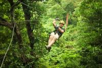 Sarapiqui River Sightseeing Cruise and Zipline Canopy Tour from San Jose