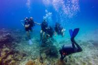 Scuba Diving Excursion in Punta Cana