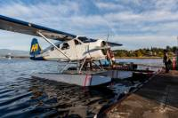 Seaplane Flight to Victoria and Whale-Watching Cruise