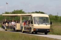 Shark Valley Everglades Guided Tram Tour