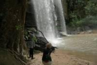 Shimba Hills Day Safari
