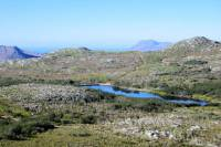 Silvermine Nature Reserve Hike from Cape Town