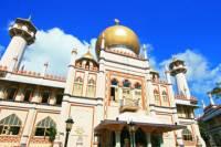 Singapore Shore Excursion: Singapore's Cultural Heritage Tour