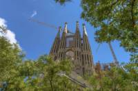 Skip the Line: Barcelona Sagrada Familia Tour Including Tower Entry