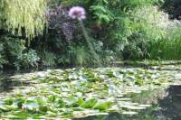 Skip the Line Giverny Small Group Roundtrip Transfer and Skip the Line Entrance Ticket from Paris