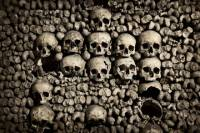 Skip the Line Paris Catacombs Guided tour