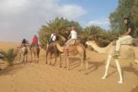 Small-Group 2-Night Desert Tour from Marrakech