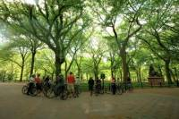 Small-Group Bike Tour of Central Park