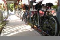 Small-Group Cycling Tour from Ho Chi Ming City