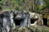 Small-Group Hong Kong Walking Tour: WW2 Battlefield Trail