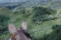Small-Group Horseback-Riding Tour for Experienced Riders